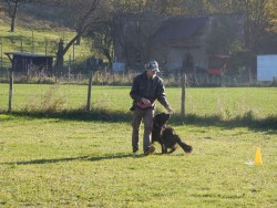Rally Obedience am 31.10.2015