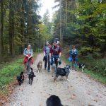 Auf dem Weg zur Spadenbergkapelle